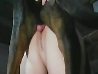 real zoo sex