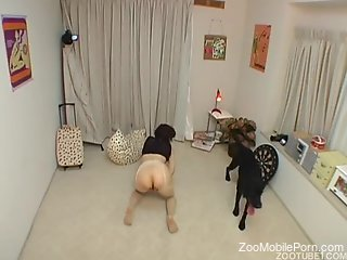 Asian wife ass fucked by a dog and made to swallow