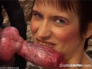 Milf feels hot dog's cock in her snatch after a great oral