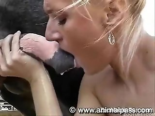 Aroused females in a perfect combination of porn scenes