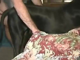 Horny guy dominating his black dog's tight pussy