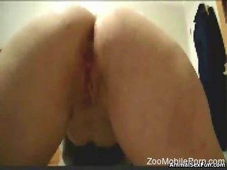Sexy little minx getting fucked like a slut on all fours