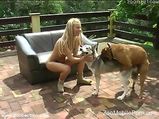 Blonde babe offers great blowjob before trying anal with the dog
